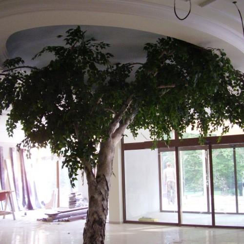Strom v kúpeloch